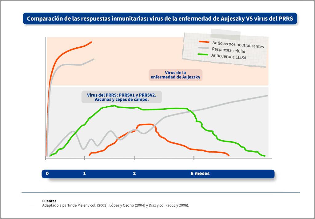 Comparación de las respuestas inmunitarias frente al virus de la enfermedad de Aujeszky y el virus del PRRS